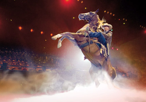 Discover the Australian Outback Spectacular